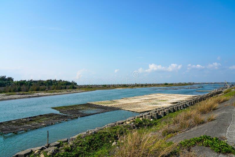 Estuaire de rivière de Luermen (la défense naturelle du capital) au parc national de Taijiang, Tainan, Taïwan photos stock