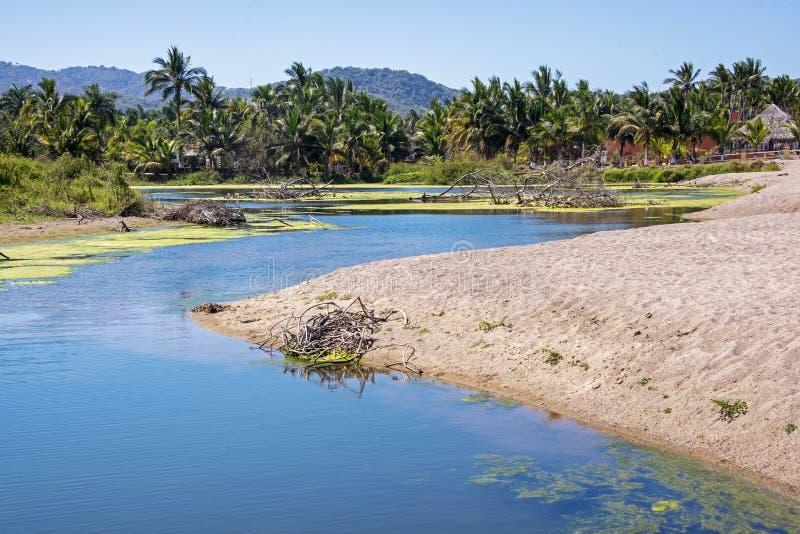 Estuaire mexicain de l'océan pacifique photographie stock