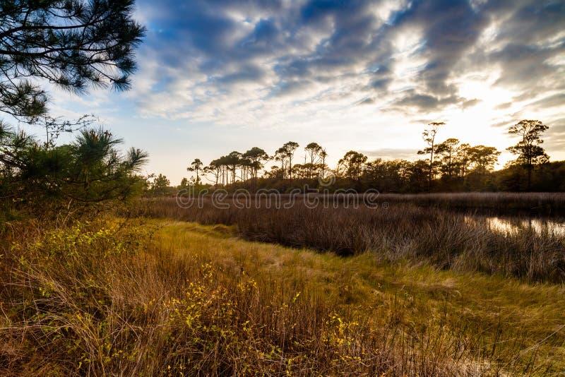 Estuario costero de la Florida foto de archivo libre de regalías