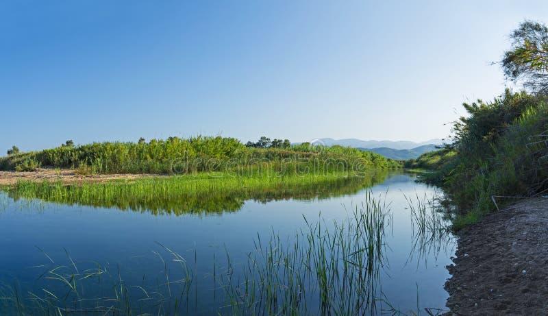 Estuarios de la NEDA del río en Peloponeso, Grecia imágenes de archivo libres de regalías