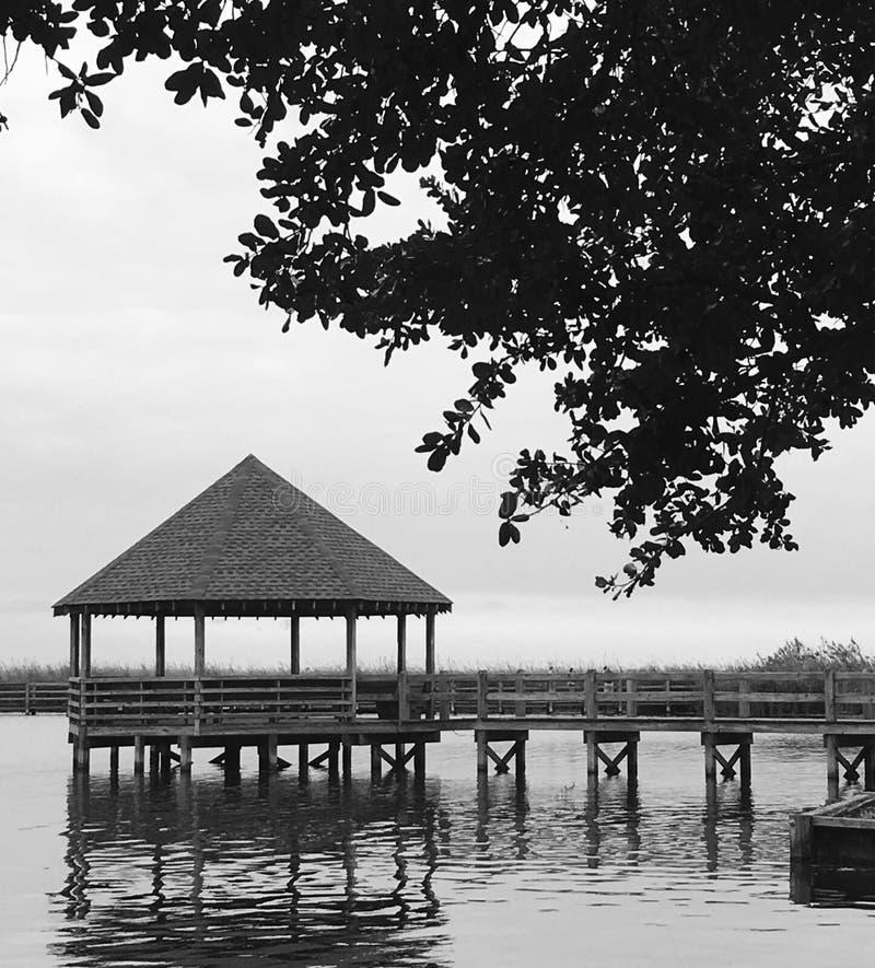 estuary royaltyfri foto