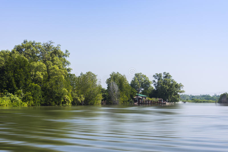 Estuary. Beautiful view of fish agriculture in estuary, Thailand royalty free stock photography