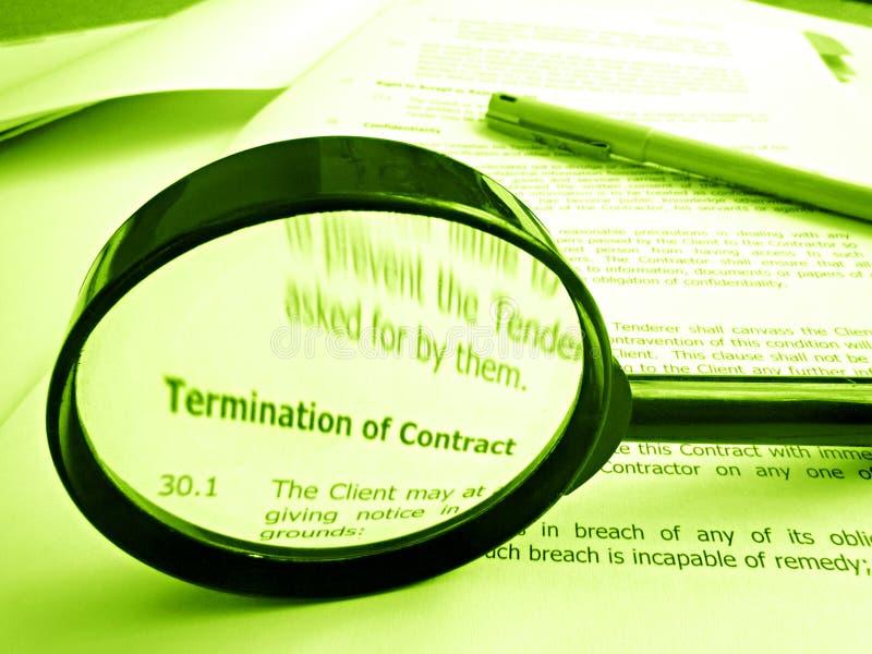 Estudando condições de um contrato fotografia de stock royalty free