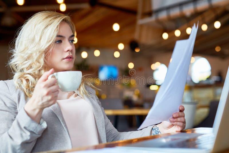 Estudando originais no café fotos de stock royalty free