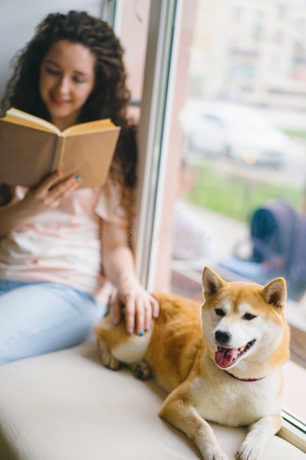 Estudante bonita que afaga o livro de leitura do cão no café no peitoril da janela imagens de stock royalty free
