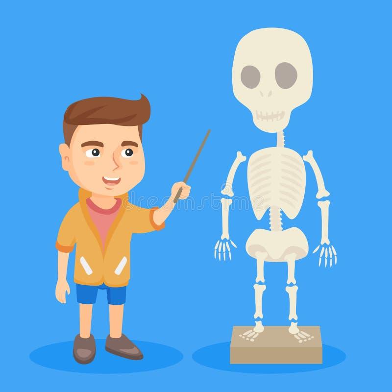 Estudante caucasiano que estuda o esqueleto humano ilustração stock