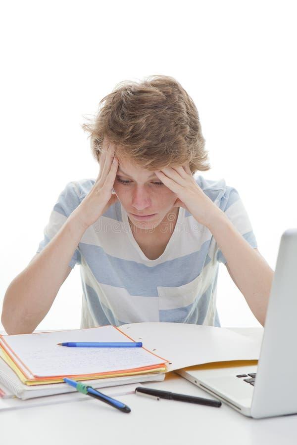 Estudante da criança que estuda trabalhos de casa imagem de stock