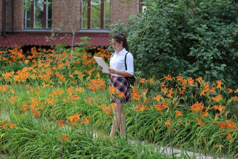 Estudante da menina com um dobrador em suas mãos fotos de stock