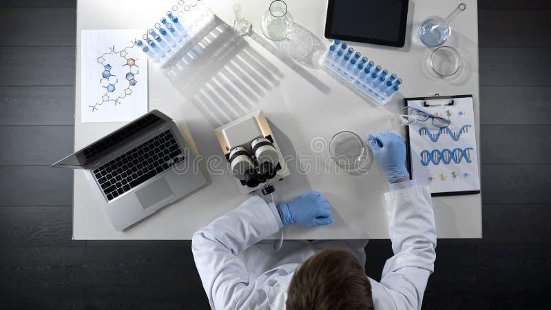 Estudante da química que faz experiências científicas, pesquisa de condução do laboratório, topview foto de stock