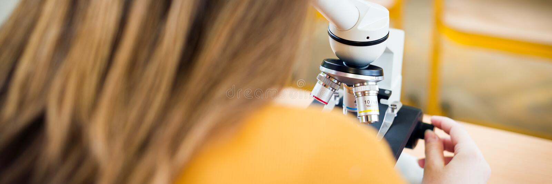 Estudante fêmea de High School na turma de Biologia Estudante que usa o microscópio imagens de stock