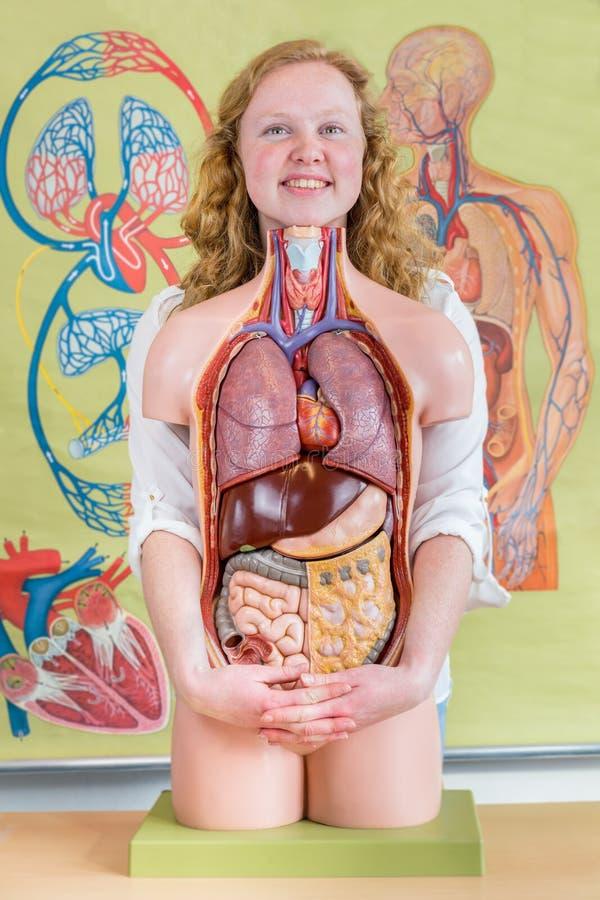 Estudante fêmea que abraça o modelo do corpo humano com órgãos foto de stock royalty free