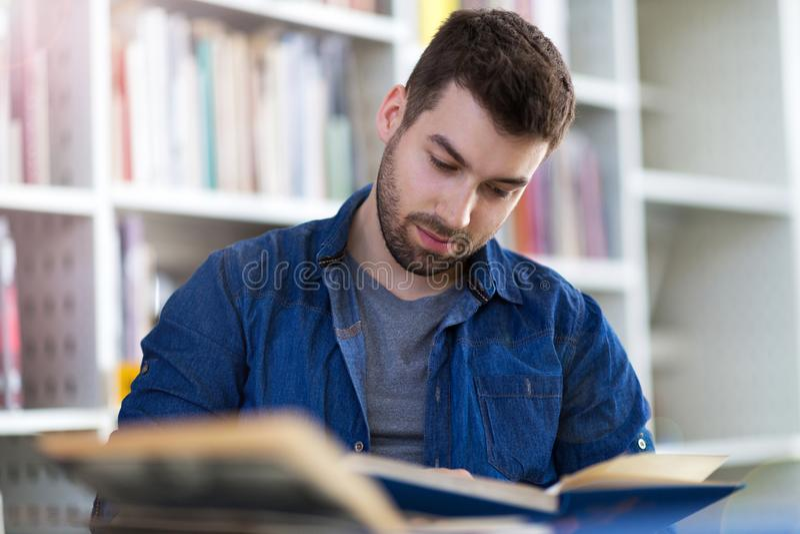 Estudante masculino que estuda na biblioteca imagem de stock