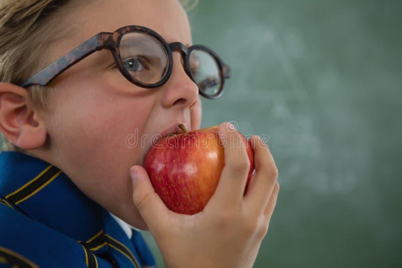 Estudante que come a maçã vermelha contra o quadro fotografia de stock