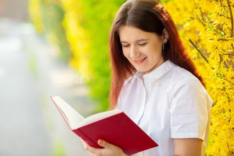 Estudante que lê um livro sobre um fundo ensolarado imagem de stock
