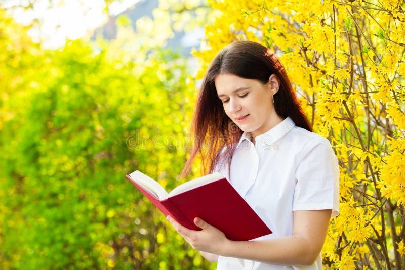 Estudante que lê um livro sobre o fundo ensolarado imagens de stock royalty free