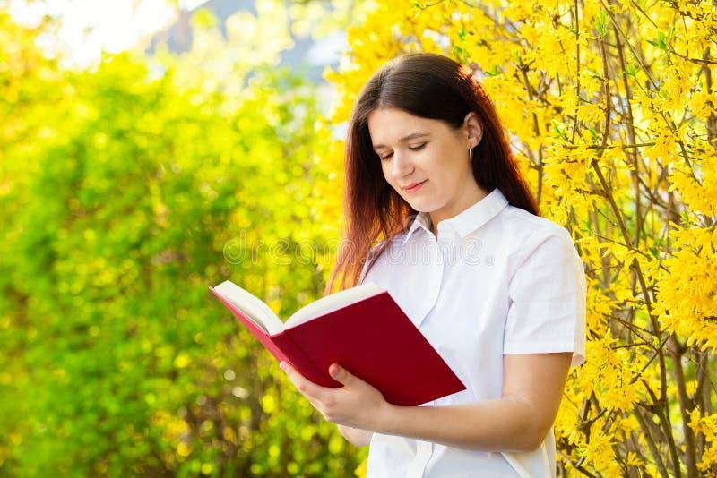 Estudante que lê um livro sobre o fundo ensolarado fotos de stock royalty free