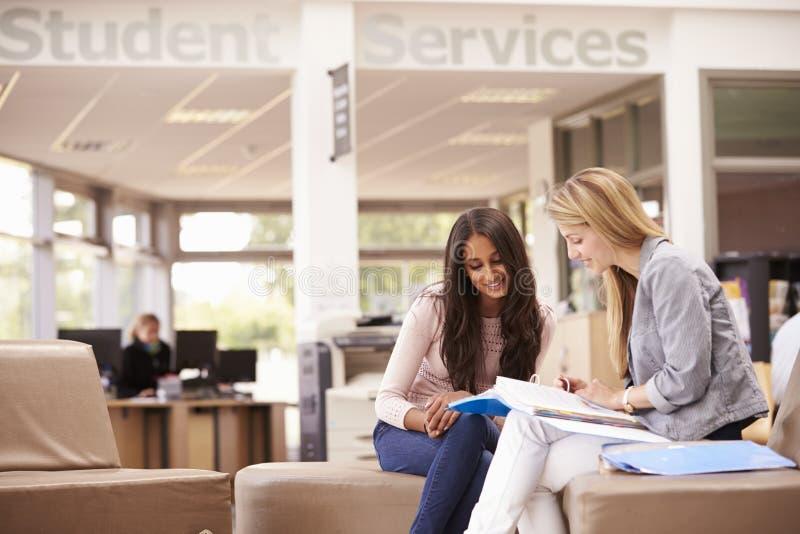 Estudante universitário fêmea Working With Mentor fotografia de stock royalty free
