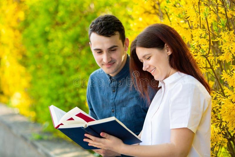 Estudantes que aprendem para o exame junto em um parque da cidade fotos de stock royalty free