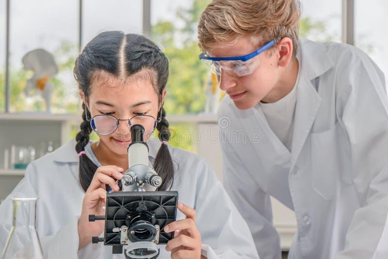 Estudantes que usam o microscópio na classe do laboratório de ciência fotografia de stock