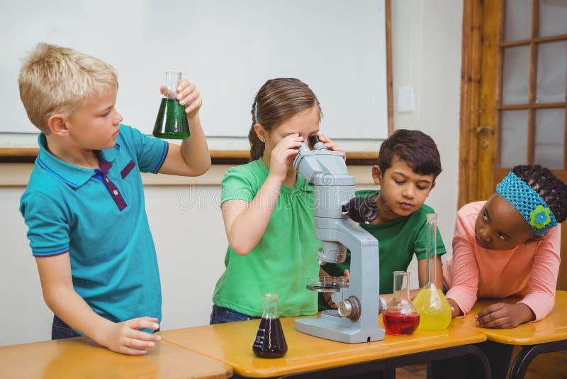 Estudantes que usam taças da ciência e um microscópio imagem de stock royalty free
