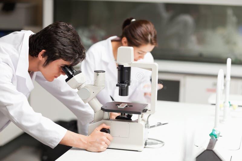 Estudantes sérios da ciência que usam um microscópio fotos de stock royalty free