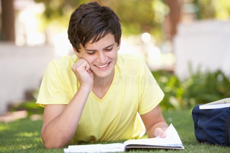 Estudiante adolescente masculino que estudia en parque imagen de archivo