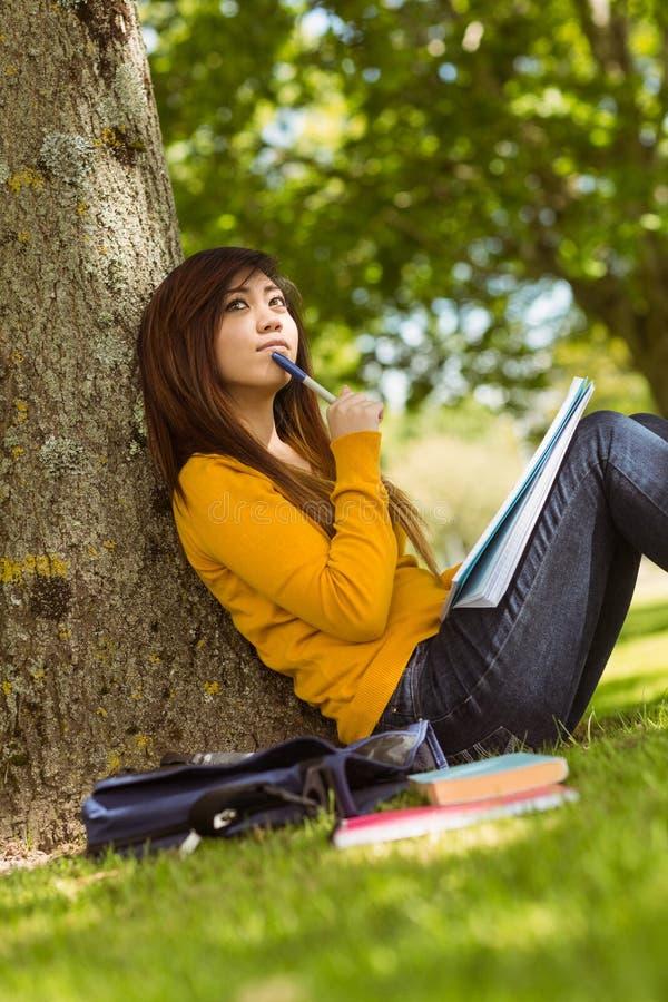 Estudiante con los libros que se sientan contra árbol en parque imagen de archivo libre de regalías
