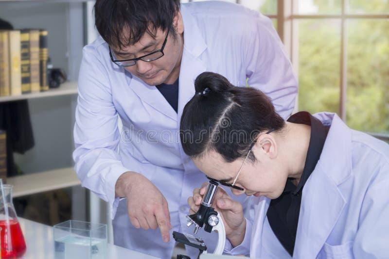 Estudiante de medicina y asistente de investigación hermosos jovenes con los microscopios imagenes de archivo