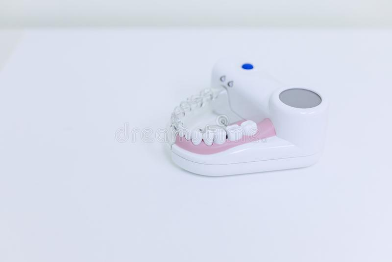 Estudiante dental de la odontología del diente que aprende el modelo de enseñanza que muestra los dientes, las raíces, las gomas, imagenes de archivo