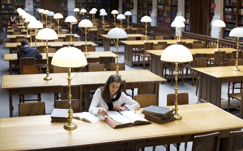 Estudiante hermoso que estudia en biblioteca imagen de archivo libre de regalías