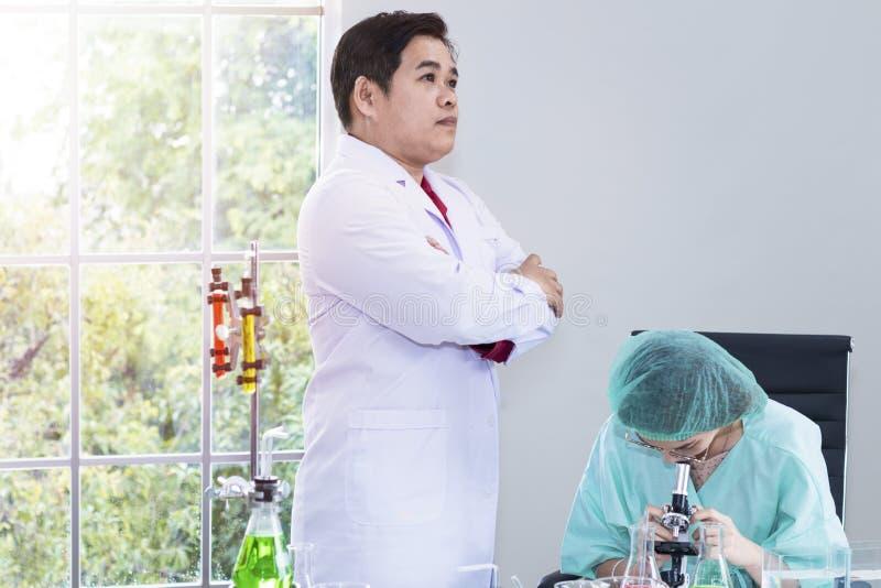 Estudiante veterinario de la mujer que mira a través de un microscopio cerca del tubo de ensayo imágenes de archivo libres de regalías