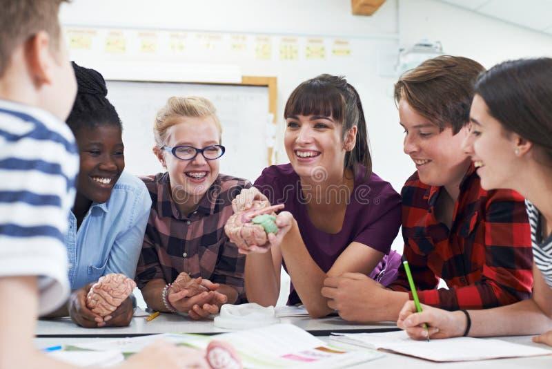 Estudiantes adolescentes con el profesor In Biology Class fotos de archivo
