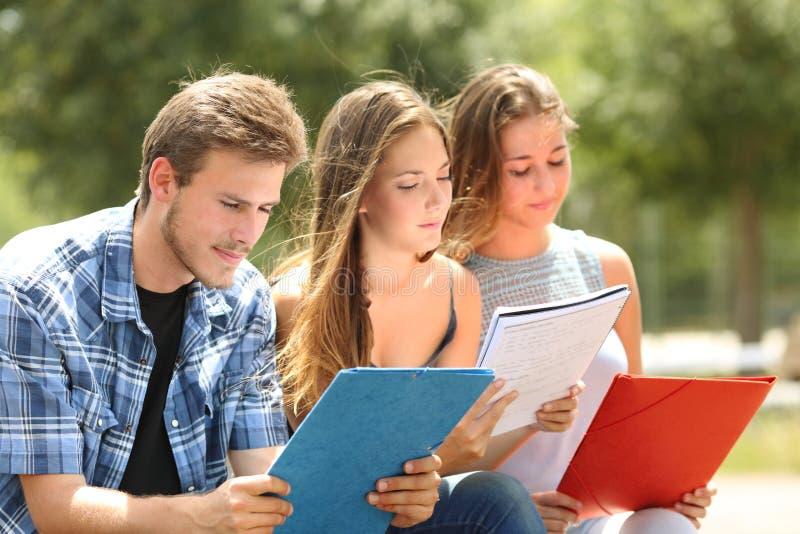Estudiantes concentrados que memorizan en un parque del campus foto de archivo libre de regalías
