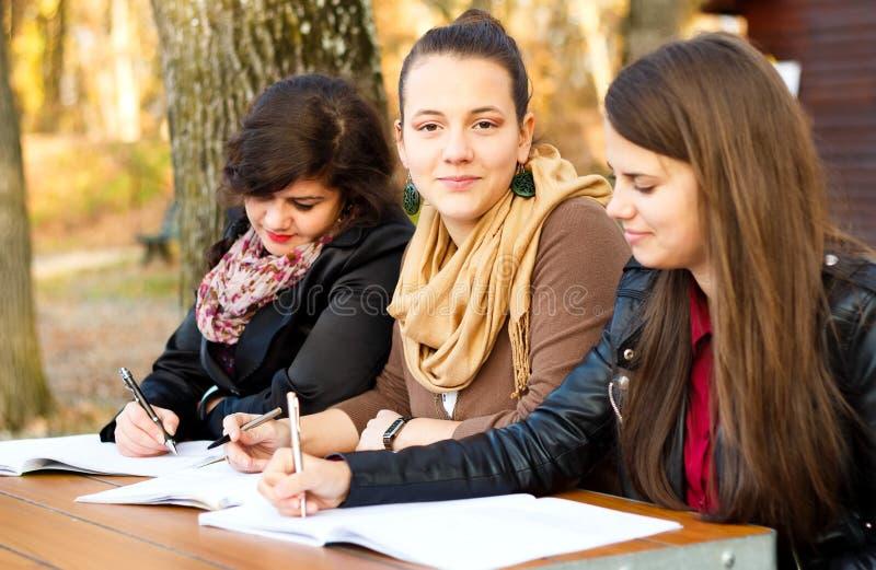 Estudiantes confiados foto de archivo