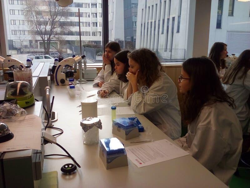 Estudiantes En Laboratorio Dominio Público Y Gratuito Cc0 Imagen