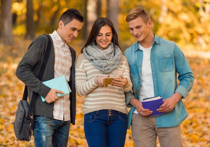 Estudiantes en parque del otoño imagen de archivo libre de regalías