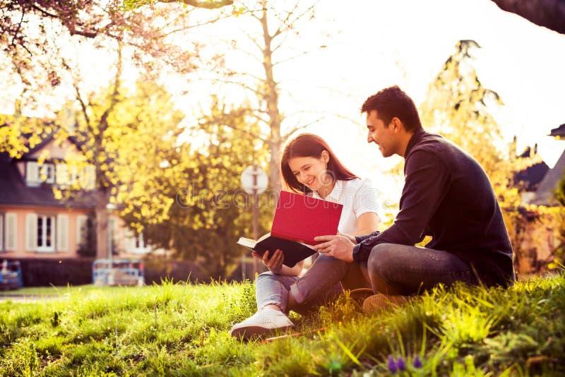 Estudiantes que aprenden para el examen junto en un parque de la ciudad fotos de archivo libres de regalías