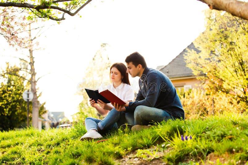 Estudiantes que aprenden para el examen junto en un parque de la ciudad fotografía de archivo