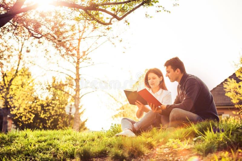 Estudiantes que aprenden para el examen junto en un parque de la ciudad imágenes de archivo libres de regalías