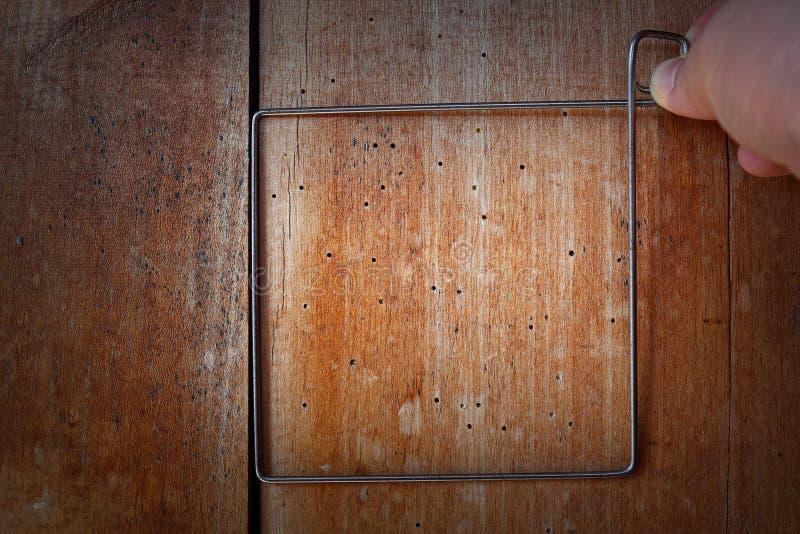 Estudiar el ataque de madera del perforador en el haz de madera imagenes de archivo