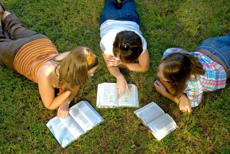 Estudo da Bíblia da juventude fotografia de stock