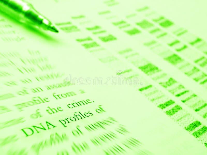 Estudo da ciência judicial - perfil do ADN foto de stock