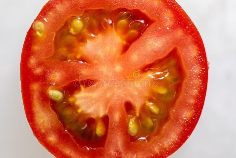 Estudo de estruturas da florescência e do fruto imagem de stock