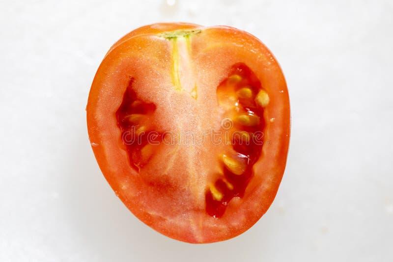 Estudo de estruturas da florescência e do fruto foto de stock