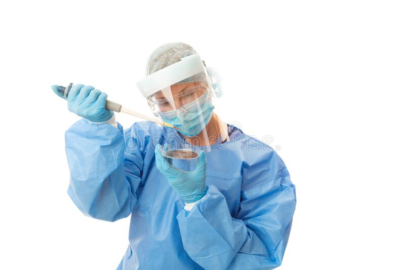 Estudos clínicos de patologia analisando culturas em placas de petri foto de stock royalty free