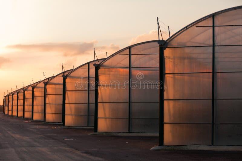 Estufa industrial da grande escala iluminada pelo sunet imagem de stock