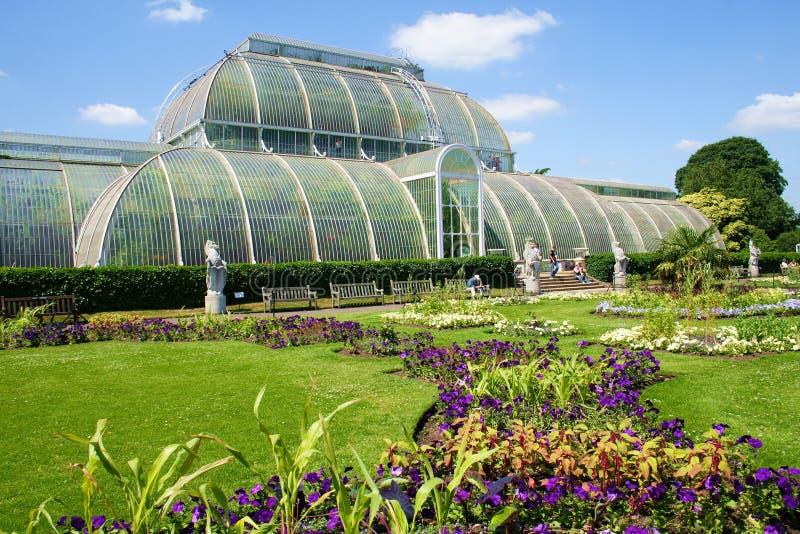Estufa de Kew fotografia de stock royalty free
