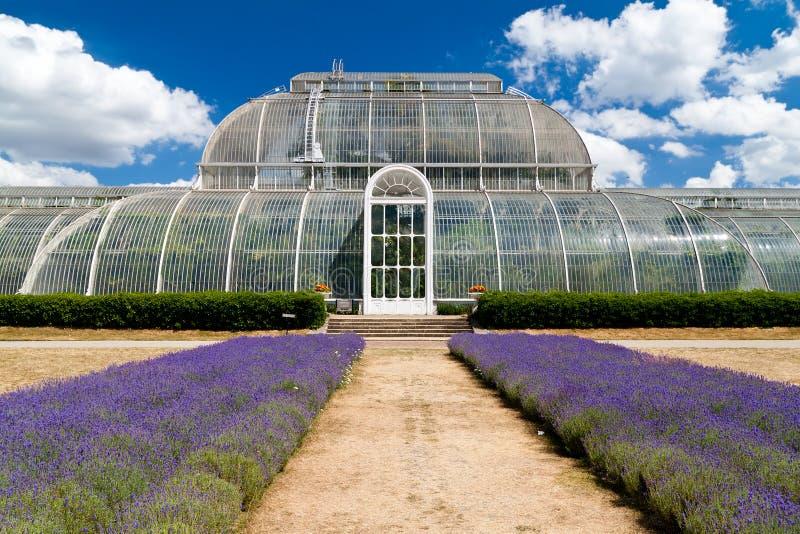 Estufa em jardins de Kew em Londres fotografia de stock