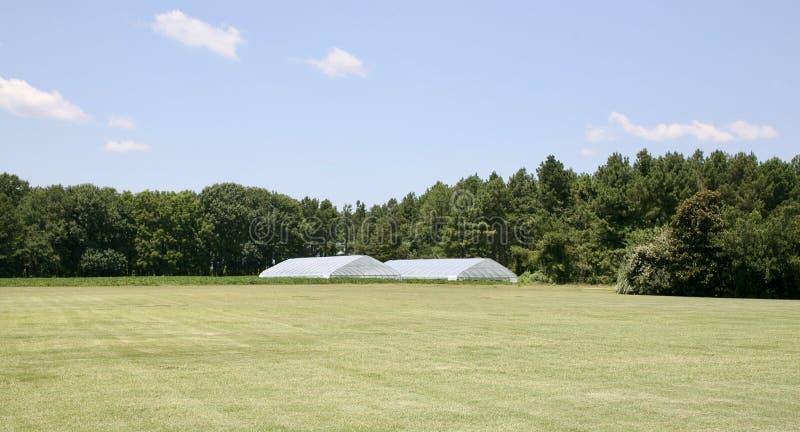 Estufa em um campo verde luxúria foto de stock royalty free
