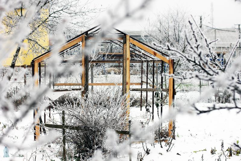 Estufa na neve Árvores na neve Primeira neve Inverno frio dezembro branco Jardim imagem de stock